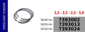 Pierścienie tłokowe kompresora 100,00 mm
