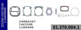 zestaw naprawczy głowicy 2488A287 / 1W250R / 1189499
